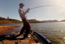 7800グラムのデカバスが釣れる写真