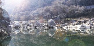 木津川釣行日記 写真
