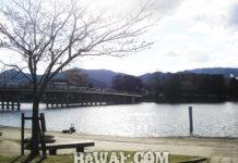 瀬田川 ビワコオープン2019開幕戦中止 写真