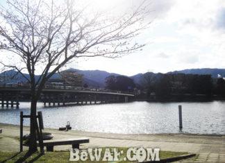 瀬田川へ (3月31日)ビワコオープン中止