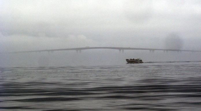 琵琶湖レンタルボート 2019年 写真