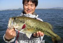 春の琵琶湖 プリスポ攻略 2019年 写真