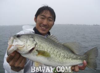 琵琶湖バスフィッシングガイドリポート ~白方様~ 46cm