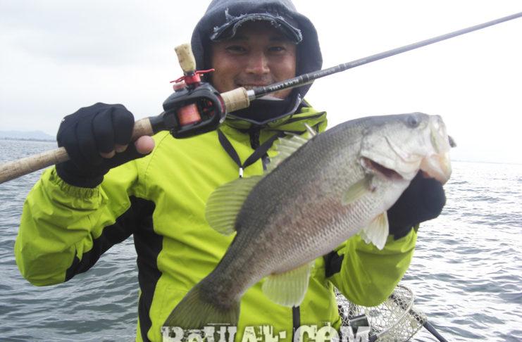 琵琶湖 2019年 ラスト釣行 メタルジグ釣果写真