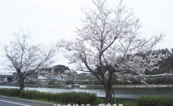 琵琶湖湖上調査 2020年 写真
