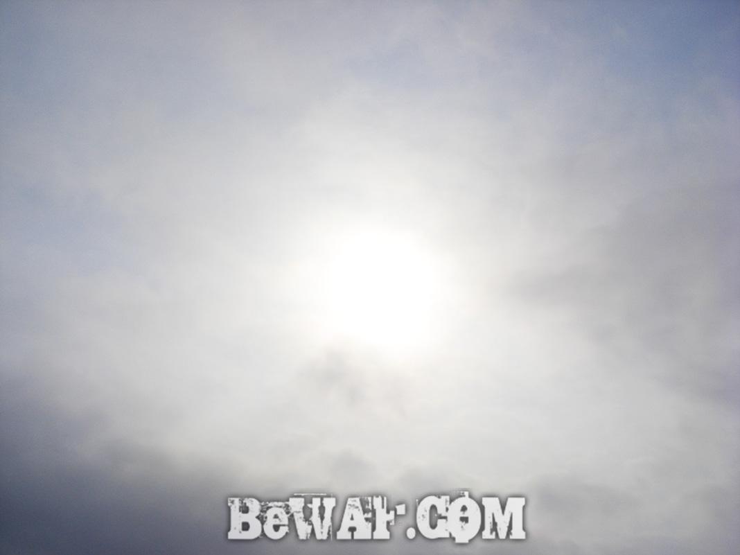 琵琶湖 春 2020年 釣果 写真