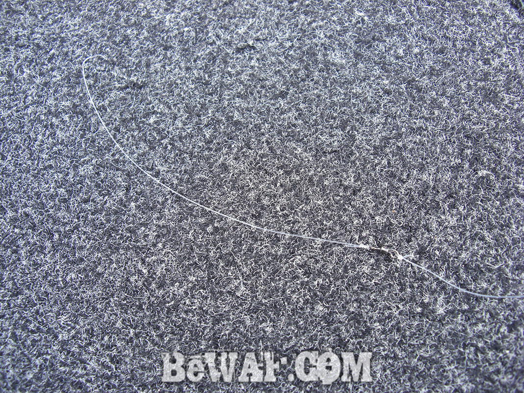 琵琶湖ヘビダン釣果 写真 2020年 春