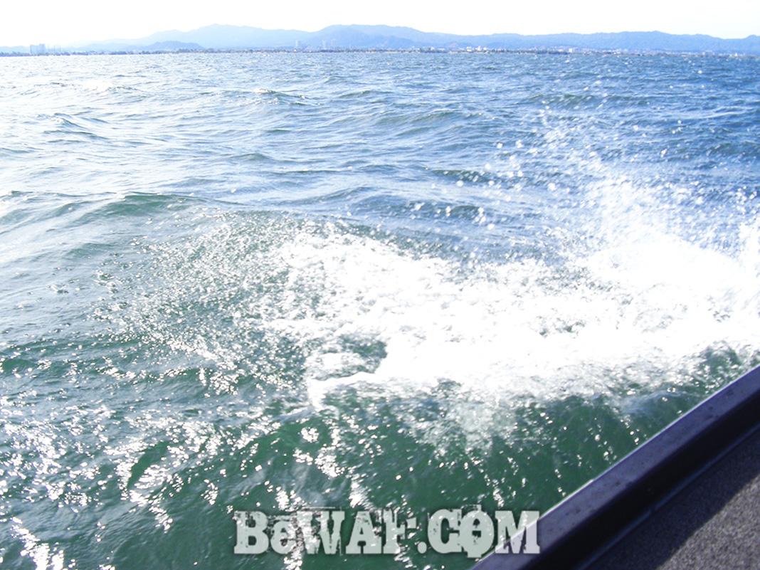 琵琶湖湖上写真 釣果2020 6月