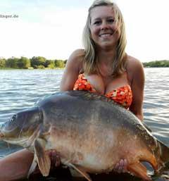画像元© www.fishcrack.com
